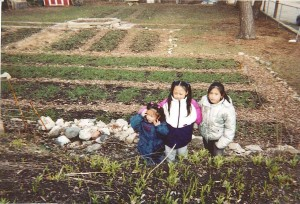West Side Youth Farm's first farm in 2000.