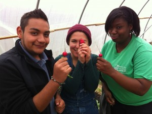 Lyndale Farm Stewards show off their radishes