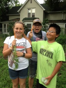 Youth farmers and staff harvest carrots in Frogtown on Monday morning.